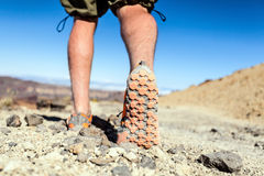 Walking or running legs sport shoes. Fitness and exercising in summer mountains royalty free stock images