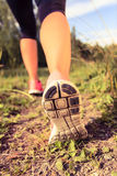 Walking or running shoes in forest, adventure and exercising Royalty Free Stock Photography