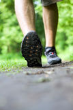Walking or running on trail in summer forest Stock Photos