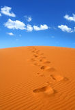 Walking on Sahara Royalty Free Stock Photography