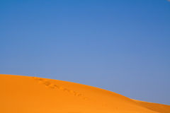 Walking on Sahara Royalty Free Stock Photo