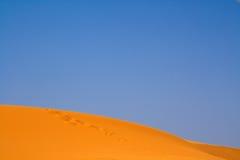 Walking on Sahara Royalty Free Stock Photo
