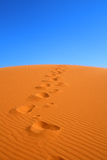 Walking on Sahara desert Royalty Free Stock Photos