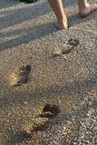 Walking on the sand Stock Image