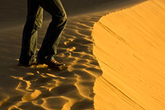 Walking on sand dune. Detail of man's leg walking on a sand dune Royalty Free Stock Images