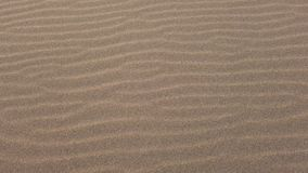 Walking on the sand rippled by the wind