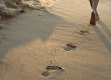 Walking on the sand. A young woman walking on the sand royalty free stock photo