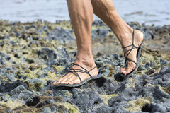Walking in sandals on coral reef. Closeup male feet wearing primitive black sandals walking over living coral reef at low tide Stock Photography