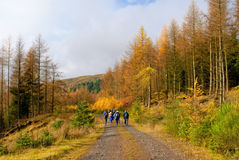 Walking in Scottish Highlands Stock Photo