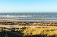 Walking on the shore on a sunny winter day at the Norh Sea Stock Photography