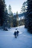 Walking through the snow Stock Photos