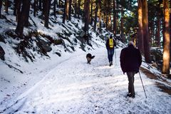 Walking in the snow royalty free stock photo