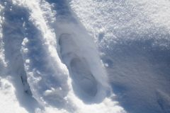 Walking in snow - close up of footstep trace in deep snowfall ground surface texture. Walking in snow - close up of footstep trace in deep snowfall ground Stock Photography