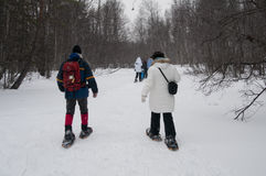 Walking on snow Stock Photography