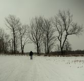 Walking in the snow. Photo taken in December 2017. This photo was in a path for snowmobiles. This photo has an atmosphere of immensity. We are small in nature Royalty Free Stock Image