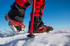 Walking on snow with Snow shoes and Shoe spikes in winter. Royalty Free Stock Photography