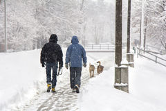 Walking in the snow Royalty Free Stock Image