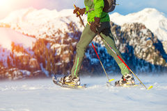 Walking with  snowshoes in mountains Stock Photography