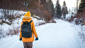 Walking on snowy road Royalty Free Stock Photography
