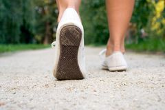 Walking sport shoes in park Royalty Free Stock Photography