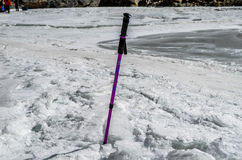 Walking stick in the frozen river Royalty Free Stock Photo