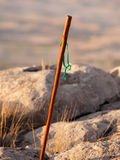 Walking stick and mountain Royalty Free Stock Photo