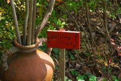Walking Sticks Royalty Free Stock Images