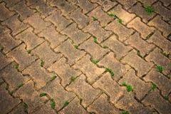 Walking street. Pattern brick of walking street stock photos