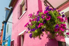 Walking through the streets of Burano. Colorful houses. Royalty Free Stock Images