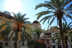 Palm trees and church on the old streets of Alicante, Spain stock photos