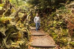 Walking through the Stumpery at Biddulph Grange Royalty Free Stock Photography