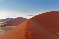 Walking on sunrise dunes in Namibia Royalty Free Stock Photo