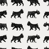 Walking terrier pattern Stock Photo