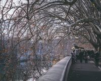 Walking on tevere on winter. Photo of lungo tevere in rome during winter in an usual day Royalty Free Stock Photos