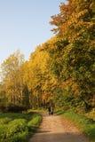 Walking Through The Autumn Royalty Free Stock Image