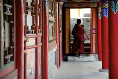 Walking Tibetan Monk Royalty Free Stock Images