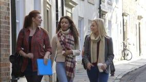 Walking to University stock video footage