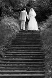 Walking together. Wedding couple going up stairs stock photography
