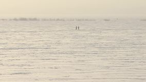 Walking together on the lake. stock footage