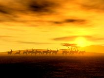The Walking Tour. Of African Antelopes, illustration Royalty Free Stock Photography