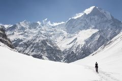 Tourist on the background of the Machapuchare mountain royalty free stock photos