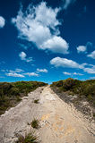 Walking track. Through Australian coastal land stock photo