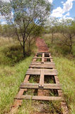 Walking track. In the bush, Australia, Northern Territory Royalty Free Stock Photo