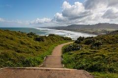 Walking track above Muriwai Beach Royalty Free Stock Image