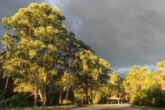 Walking track along the Yarra River in Warrandtye in Melbourne, Australia. Melbourne, Australia - November 24, 2017: Walking track along the Yarra River in royalty free stock photography