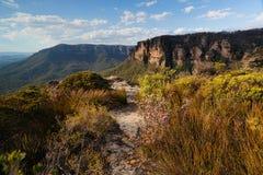 Walking track in Blue Mountains Australia Royalty Free Stock Photo