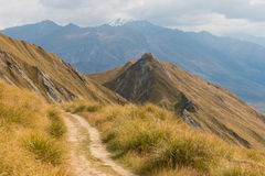 Walking track in Mount Aspiring National Park Stock Photography
