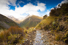 Walking Track in Otira Valley Track, Arthur's Pass, New Zealand Royalty Free Stock Photography