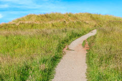 Walking track to the top of Mount Eden, Auckland. Royalty Free Stock Images