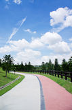 Walking trail. Tropical landscapes and walking trail Stock Photos